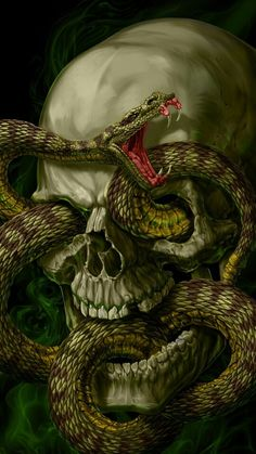 Watch and share Skull GIFs on Gfycat Dark Fantasy Art, Dark Art, Fantasy Artwork, Dark Images, Images Gif, Creepy Images, Bing Images, Gifs, Snake Gif