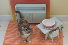 "Wee Wylla sez ""of course I have my own dining room set.  Doesn't every kitty?""by lalalaurie, via Flickr"