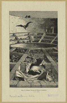 Zoroastrians offered their dead to vultures on the platform known as the dakhma. They believed that the vultures would help release the soul from the body.
