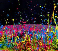 Sony World Photography Awards Exhibition Colorful Neon Paint Splash MásColorful Neon Paint Splash Más Color Splash, Paint Splash, Color Pop, Crazy Colour, World Photography, Photography Awards, Color Photography, Splash Photography, Rainbow Photography