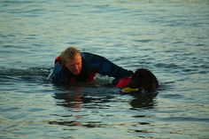 A New Foundland female dog being trained to work in the water, alongside Trearddur Bay RNLI     Dog Training DVDS  http://www.trainingdogsvideos.com