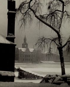 josef sudek➕More Pins Like This One At FOSTERGINGER @ Pinterest ➖