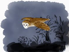 Barn owl from memory, not entirely happy with the owl, but learnt a lot about layers and textures doing this one Prompt, Inktober, Sci Fi, Layers, Owl, Barn, Fish, Texture, Happy