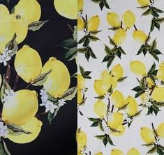 Cheap cotton fabric black, Buy Quality cotton fabric directly from China cotton damask fabric Suppliers: So Pretty White & Black Yellow Lemon Fruit Printed Cotton Fabric 50x140cm Free Shipping