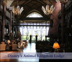 Wonderful Stay At Disney's Animal Kingdom Lodge! #AnimalKingdom #waltdisneyworld #disneyworld #foridatravel #familytravel #florida #disney