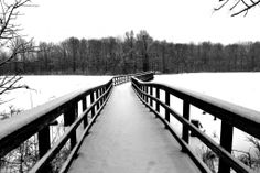 Snowy bridge over the wetlands just north of my home on the linear pathway...absolutely beautiful