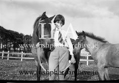 July 1964 Connemara Pony 'Ocean Breeze' with her 4 month old foal at Portmarnock Strand and Malahide. Connemara Pony, 4 Month Olds, Photo Archive, Breeze, Ireland, Irish, Ocean, Horses, Gallery