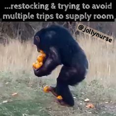 Hahahahahah I do this when I stock the triage rooms