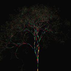 [Quando  não me fecho  em mim... Me rendo  Me enredo  Me faço cor Multicor  Multicorações Em mim]  Gostou? Curta nossa página e compartilhe nossa arte!  Imagina vestir a arte entrama? Confira o nosso site, entregamos em todo o Brasil!  http://entrama.com.br  Facebook: facebook.com/arte.entrama  Twitter: @Arte.Entrama  #entrama #arte #design #poesia #árvore #estampa #camiseta #cores #multicor #corações