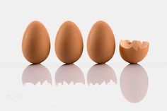 Eggs #daleholman #daleholmanmaine