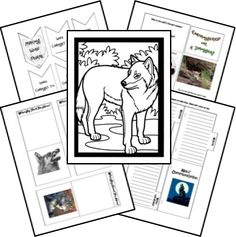 This is a FREE Wolf Lapbook. Lapbooks are a fun hands on way to learn and research themes and topics. Add in a few books and make it a unit study.