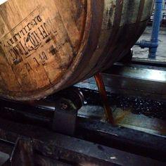 Whiskey dump Rye Whiskey, Bourbon Whiskey, Whiskey Distillery, Whisky, Buffalo Trace, Barrels, Kentucky, Beer, Usa