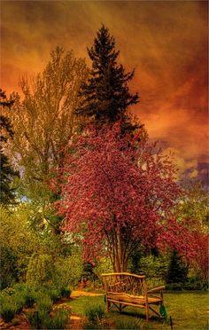 The enchanted garden Reader Rock Garden, Calgary, Alberta, Canada | Top 20 Beautiful Nature & Places In Canada.