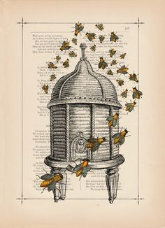 bee hive print by februaryspring I Love Bees, Birds And The Bees, Bee Skep, Bee Hives, Buzz Bee, Vintage Bee, Images Vintage, Bee Art, Vintage Art Prints