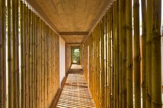Bamboo | Hallways Exotic Wooden House Exhaling Life and Energy in Costa Rica