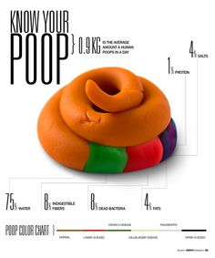 Infographic: How Much Do We Poop - And What's In It?