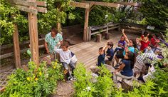 'Nature Is a Powerful Teacher': The Educational Value of Going Outside