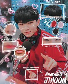 #Woozi #Jihoon #Seventeen #AnatomyEdits #Edits #Anatomy Seungkwan, Wonwoo, Jeonghan, Seventeen Memes, Seventeen Woozi, Vernon Chwe, Lee Jihoon, Seventeen Wallpapers, Pledis Entertainment