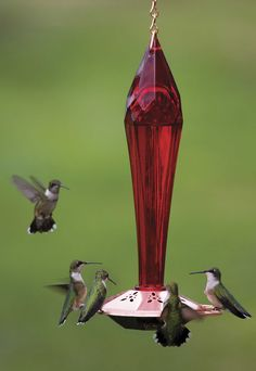 Ruby Red Hummingbird Feeder. This is pretty $36.95 Pretty shape in a garden.