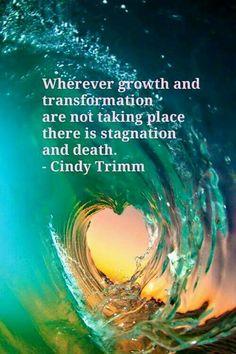 - Cindy Trimm