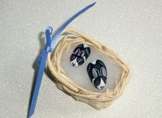 Dutch bunny rabbits