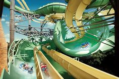 Waterslide Atlantis The Palm