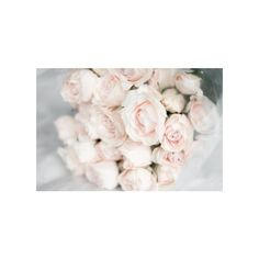 Photography Images, Page Photography, Black And White Photography,... ❤ liked on Polyvore featuring backgrounds and flowers