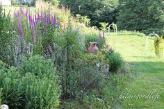 Hillside Garden