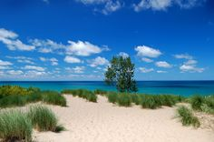 Who knew Indiana could look like this? -- Midwest Vacation Destinations pinning for the photo alone. Midwest Vacations, Best Vacations, Vacation Destinations, Family Vacations, Michigan City Indiana, Indiana Dunes, Lake Michigan, Ohio, Weekend Trips