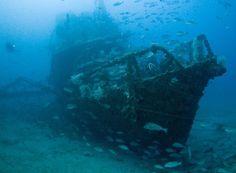 SS Yongala Wreck - Cape Bowling Green, Queensland, Australia