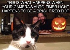 Catch the red dot