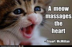 A meow massages the heart.  I also think a purr soothes the soul too!