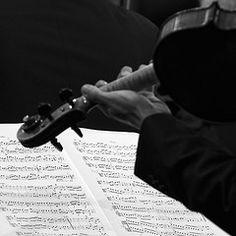 violin--eine kleine nachtmusik