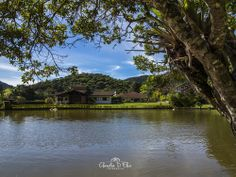 O lago na Granja Comary, onde fica a sede da CBF. #cariocadna #worldcup2014…
