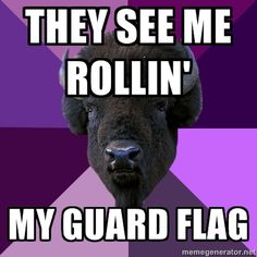 They see me rollin'...my guard flag ;)