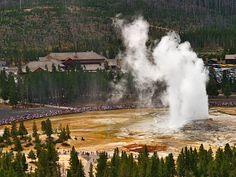Yellowstone Old Faithful.. :)