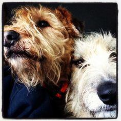 Kenny & Falcor