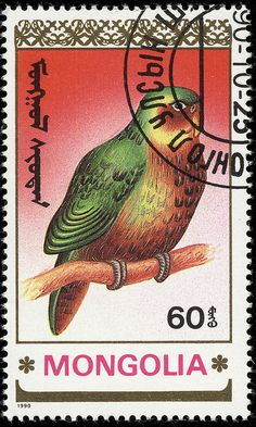 Birds .Mongolia, circa 1990