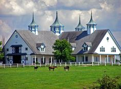Just off the beaten path between Versailles and Lexington, Kentucky, there stands a fabled stable where thoroughbred Derby racehorse contenders are born and raised.