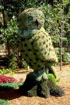 Topiary Ave, Boynton Beach, FL 33437, USA  - Owl TopiaryTopiaries Art, Art Gardens, Gardens Topiaries, Topiaries Gardens, Owls Topiaries,