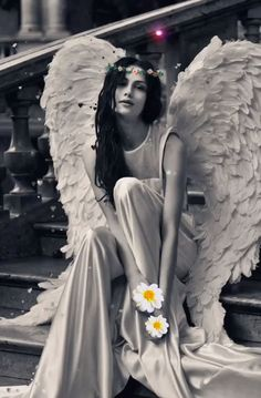 Awaiting Spring. 💐🕊🤍 Beautiful Fantasy Art, Beautiful Gif, Beautiful Pictures, Angel Images, Angel Pictures, Lovely Girl Image, Girls Image, Animated Love Images, Color Splash Photo