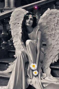 Awaiting Spring. 💐🕊🤍 Angel Images, Angel Pictures, Beautiful Fantasy Art, Beautiful Gif, Lovely Girl Image, Girls Image, Color Splash Photo, Angel Artwork, Gothic Angel
