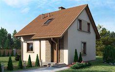 Zdjęcie projektu D21 - Piotruś wersja drewniana WAI1358