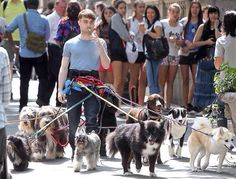 The level of which Daniel Radcliffe doesnt give a fuck is inspiring.