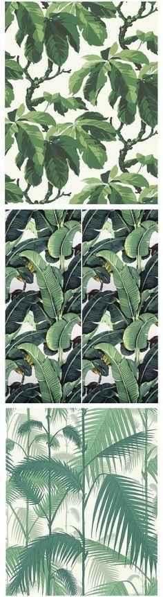 behang palmbladeren