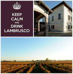 Wine Blog Roll - Il Blog del Vino in Italia: Medici Ermete ed il Rinascimento del Lambrusco