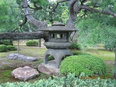 Manacured grounds inside a Shogun (Japanese Castle) Site in Kyoto, Japan