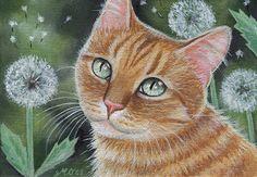 Orange Tabby Cat and Dandelions