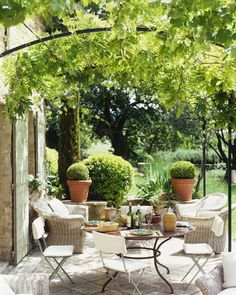 Typical French patio with Wisteria Arbor