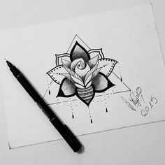 flor, flower, and lotus kép